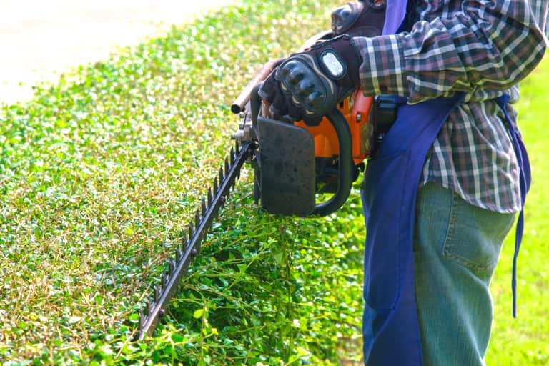 A man cutting a bush with a hedge trimmer.